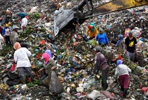 Sumatra, Indonesia scavengers ( Dedi Sahputra:EPA) Nov 30 2015
