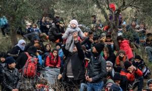 Canakkale, Turkey:refugees ( Ozan Kose:AFP:Getty Images) Jan 29 2016