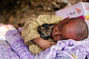 Chinese boy and cat August 12 2014