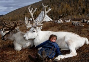 Mongolian child with deer (Hamid Sardar-Afkhami) Feb 20 2015
