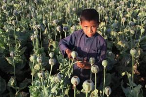 Afghan child farmworker (Ghulamullah Habibi:EPA) Apr 29 2015