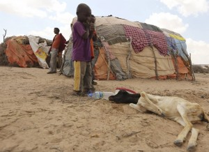 Somalia drought (Feisal Omar:Reuters) Apr 8 2016
