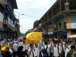 Kashmiri protest for Gaza 2014 (INn AMm) May 25 2016