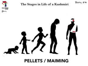 Kashmiri #4