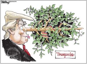 Trumpocchio