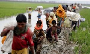 Fleeing Rohinga *Shafiur Rahman) Sept 5 2017