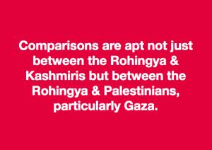 Meme about Rohingya