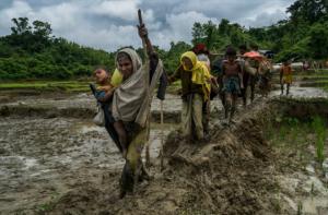 Rohingya escaping in Bangladesh (Adam Dean:NYT) Sept 3 2017