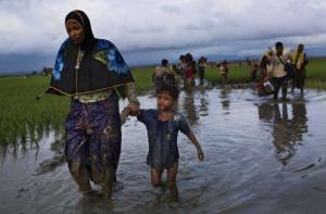 Rohingya fleeing Sept 8 2017 (Bernat Armangue:AP)