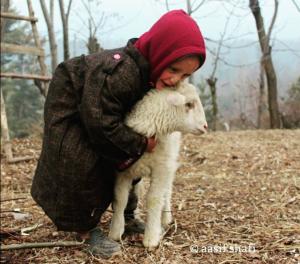 Kashmiri boy hugging his sheep friend (Aasif Shafi) Dec 21 2017