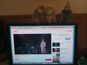 My flock listening to Les Miserables Feb 14 2018