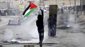 Pal protest (Al Jazeera) Jan 31 2018