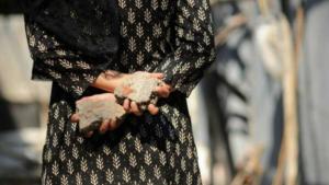 Kashmiri woman stone pelter Mar 15 2018