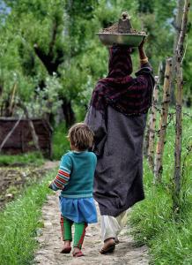Kashmiri working woman (Bilal Ahmad) Mar 28 2018