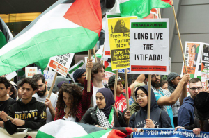 NYC stands with Palestine (Shehab News)