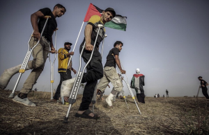 Palestinian wounded at Great Return March (Palestine Observer) May 27 2018