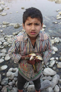 Aasif Shafi's award winning photo May 31 2018