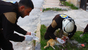 White Helmets and cat May 28 2018